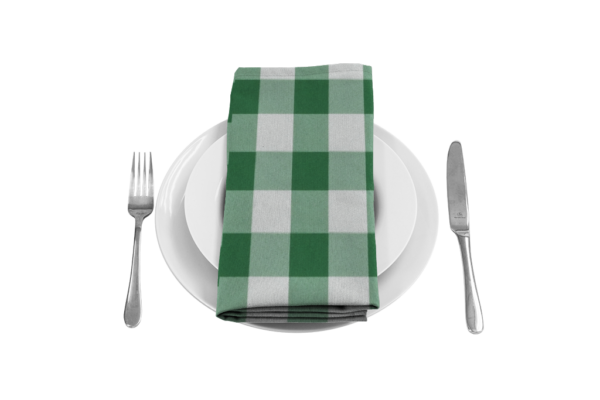 Gingham Green Napkin